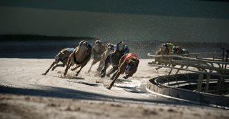 Greyhound Club loses first round in court but vows to fight on