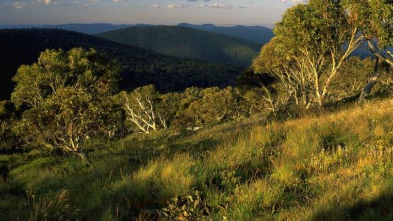 View over Namadgi National Park