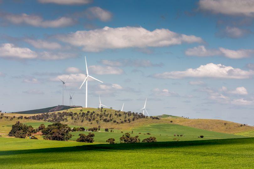 Hornsdale Wind Farm.