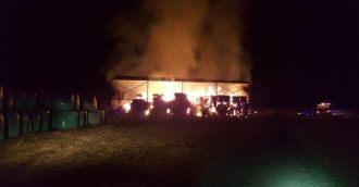 Feed goes up in flames  Cooma couple arrested