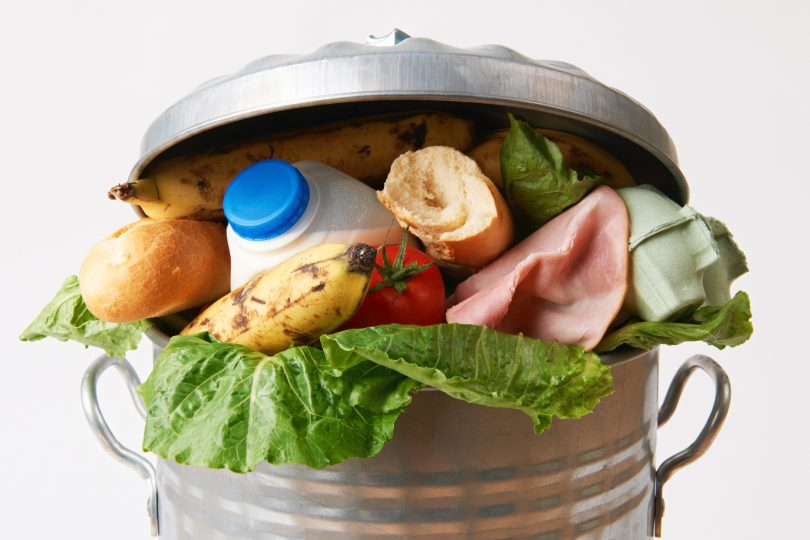 Food scraps in garbage bin