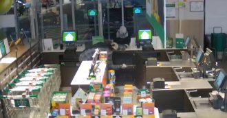 Pair  8217 s crime spree caught on CCTV