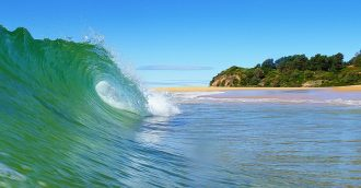 Eurobodalla coastline management – have your say