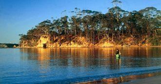 New management plan for Batemans Marine Park