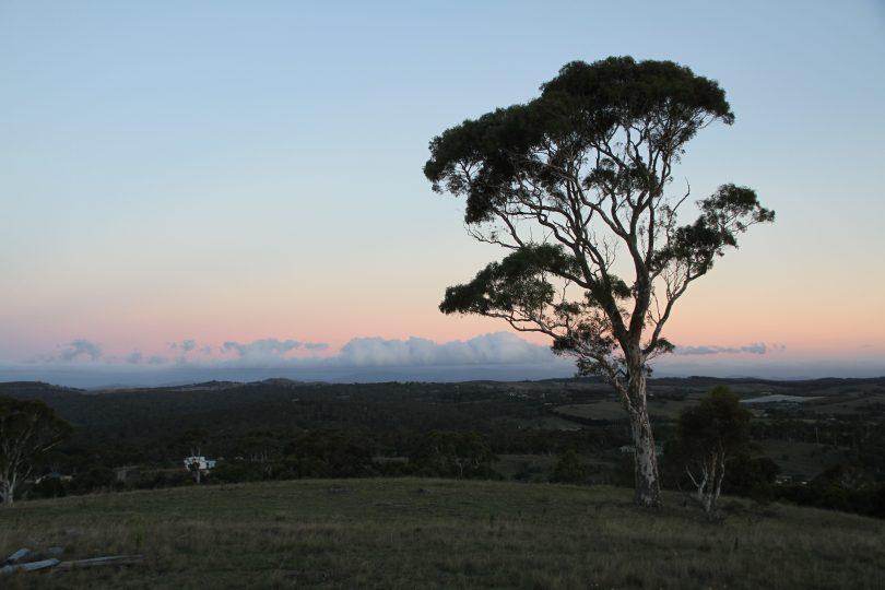 Beautiful Wamboin. Photo: Supplied