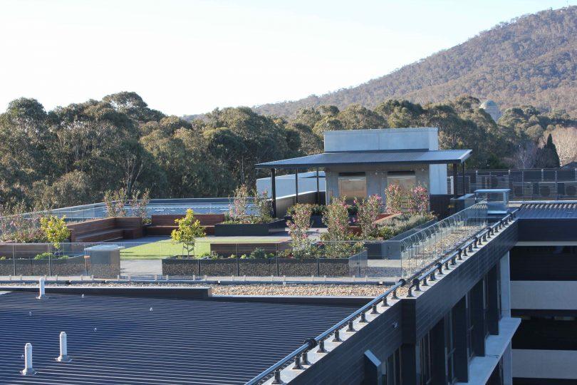Rooftop garden beds