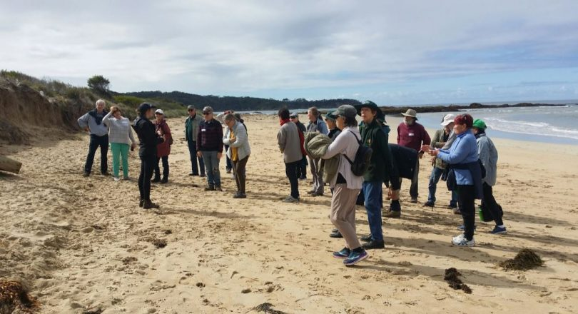 Landcare Coordinator Emma Patyus briefs volunteers at Tomakin. Photo: Eurobodalla Shire Council.