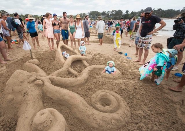 Octopus sand display