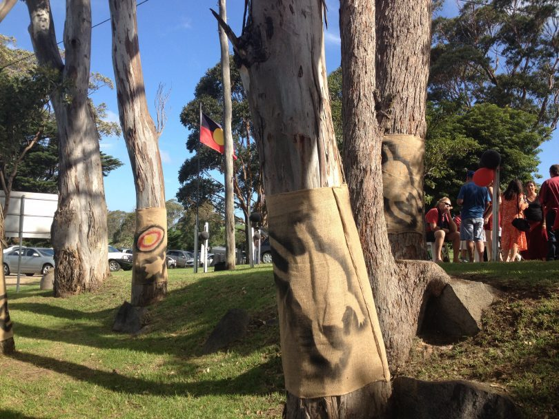 Trees decorated with Glen Atkinson's turtle totem outside Apma gallery in Tilba on January 20. Picture: Elka Wood.