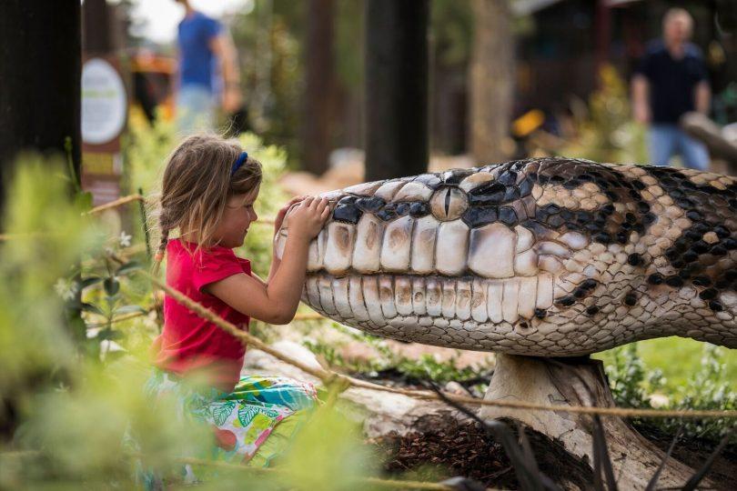 The zoo's new adventure playground