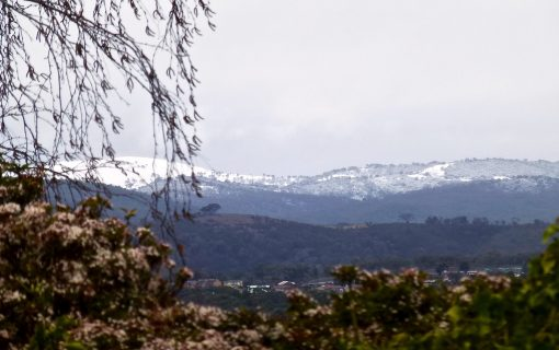 Snow and rain? Welcome to spring in the ACT