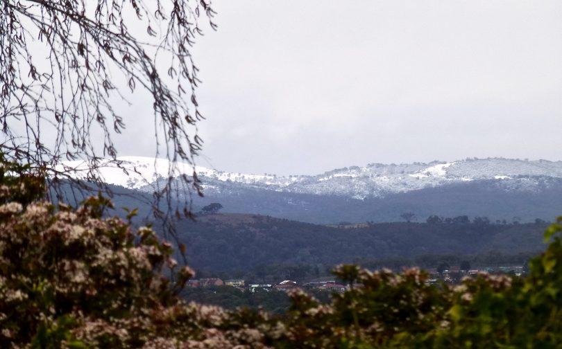 Mountains east of Quenbeyan