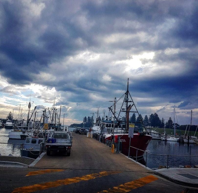 The Bermagui Wharf during tuna season