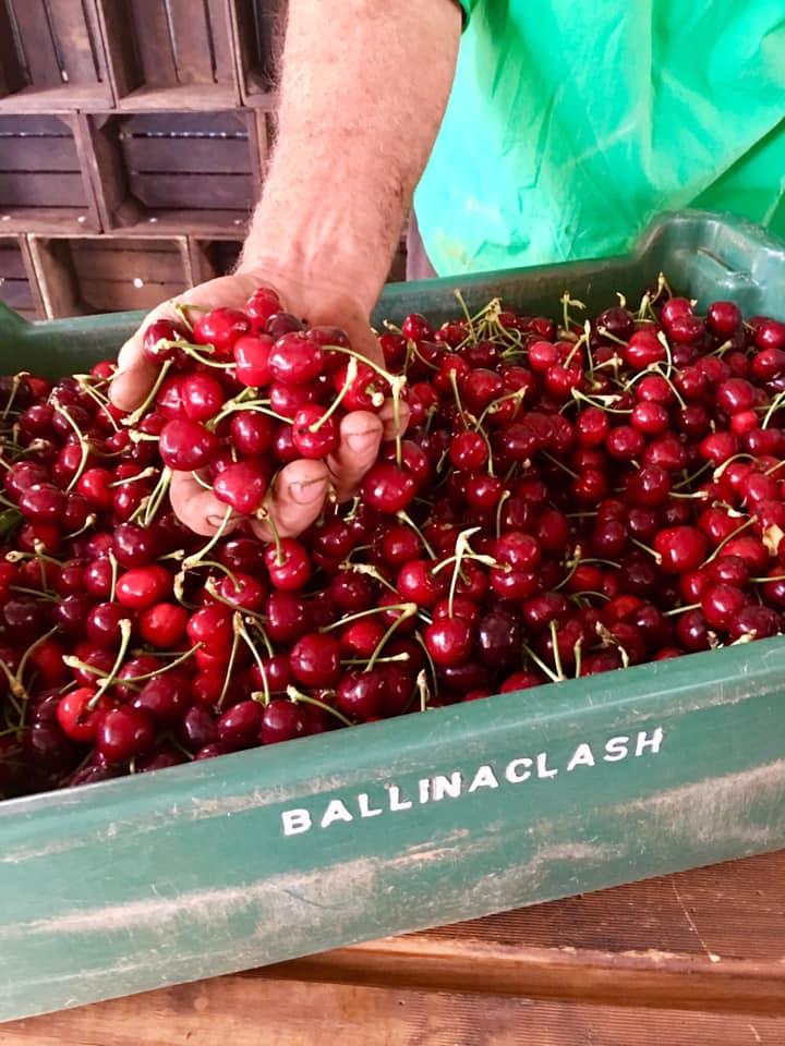Ballinaclash cherries