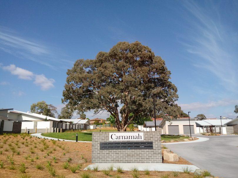 The Chapman housing project on Darwinia Terrace