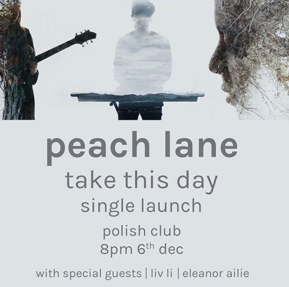 Peach Lane poster