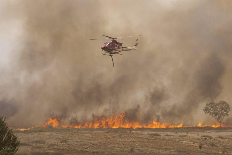The Pialligo fire