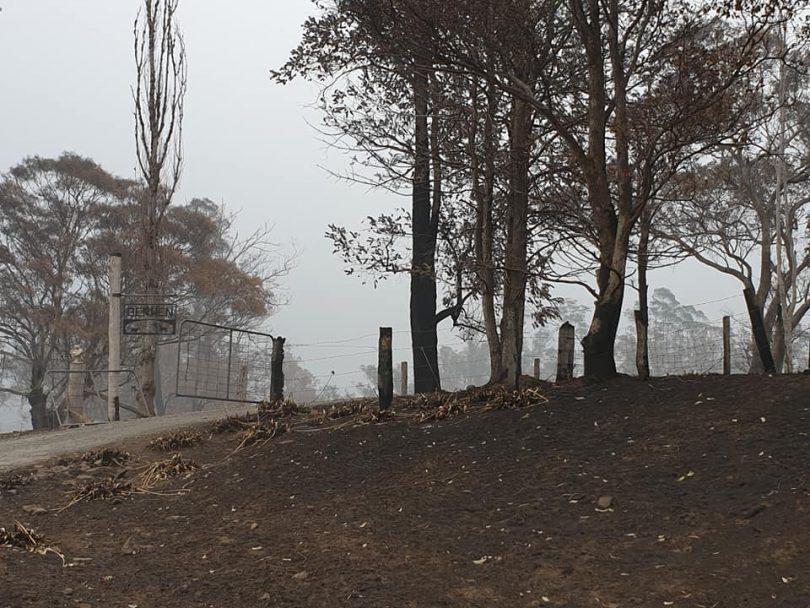 Devastation on a property at Cobargo
