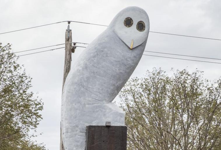 The Belconnen Owl statue