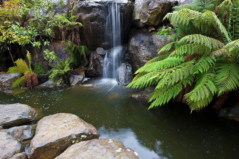 The Australian National Botanic Gardens