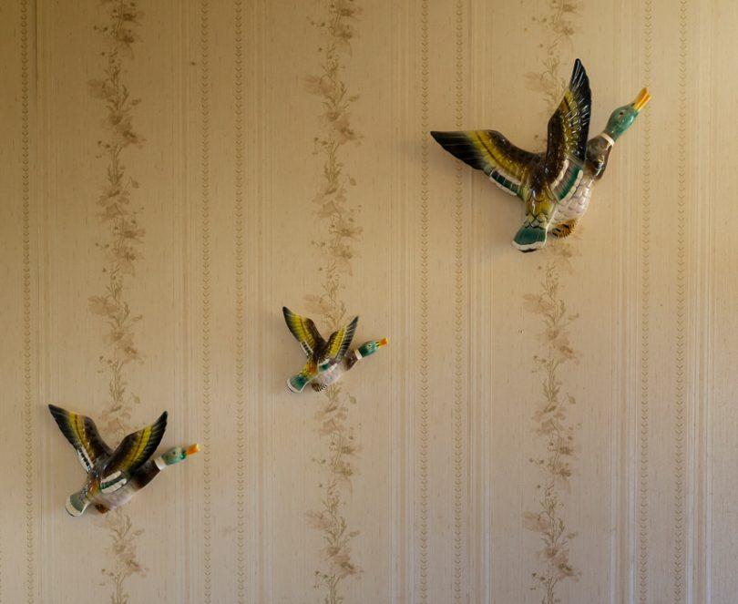 Treasured flying ducks