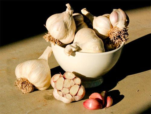 Mmmm ... garlic