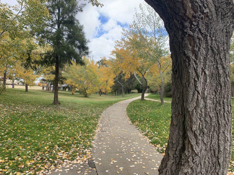 Canberra parks