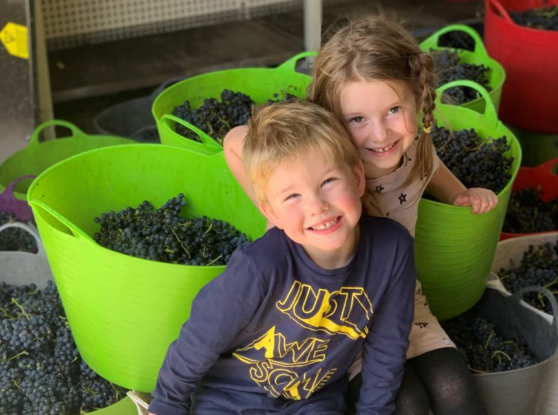 Ryder and Eloise McDougall sitting among buckets of grapes.
