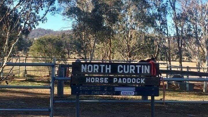 North Curtin Horse Paddocks