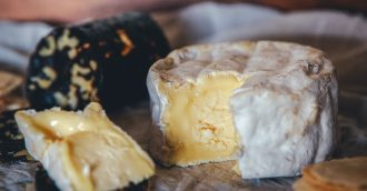 Kinnoul Hill Camembert is a favourite, made from the Jersey herd's milk.