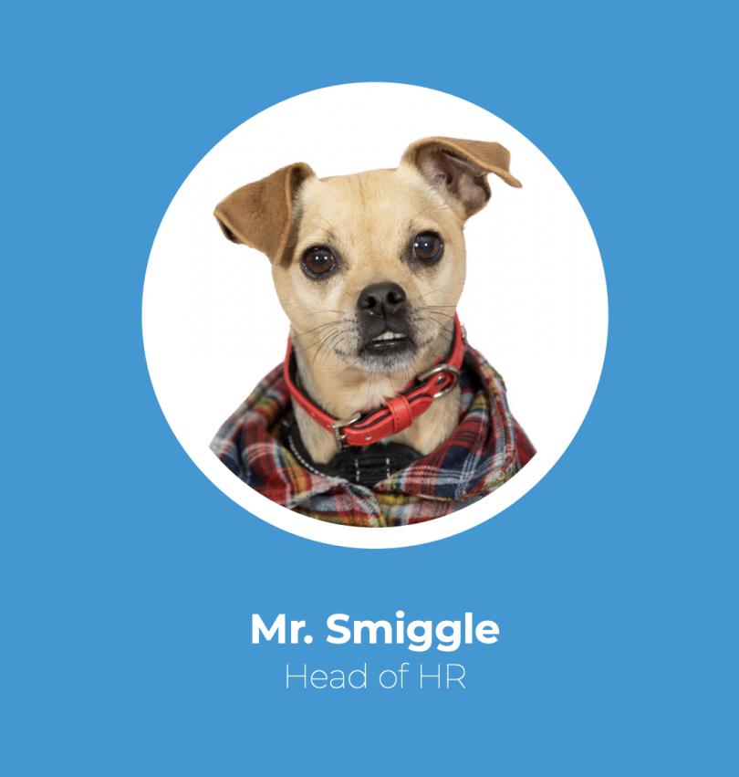 Mr Smiggle