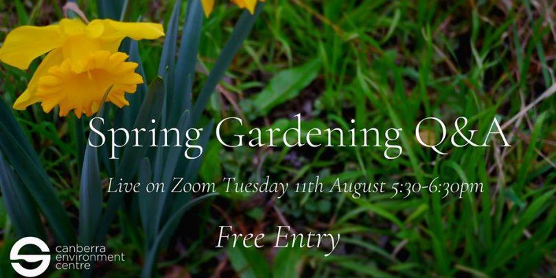 The Spring Gardening Q & A