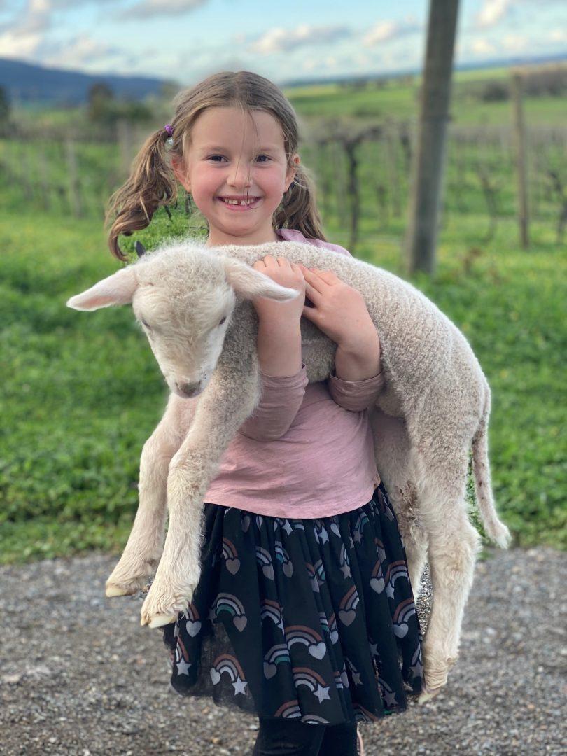 Eloise McDougall holding lamb at Lake George Winery.