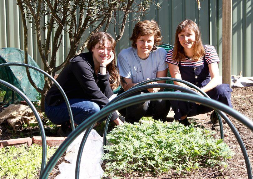 Suburban farmers Bea Kelly-Loane, Karina Vennonen and Lil Costello in garden.