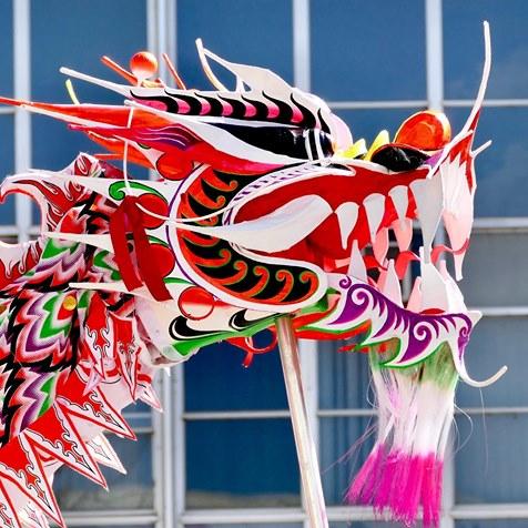 Canberra Dragon Dance