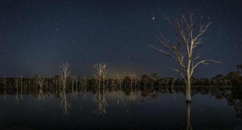 Matt Tomkins's winning picture of Mulligans Flat Nature Reserve.
