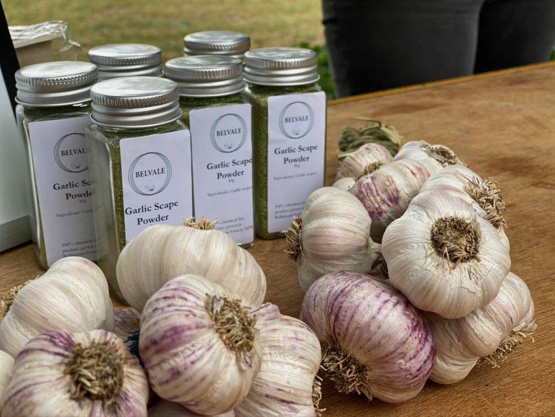 Garlic, Bungendore