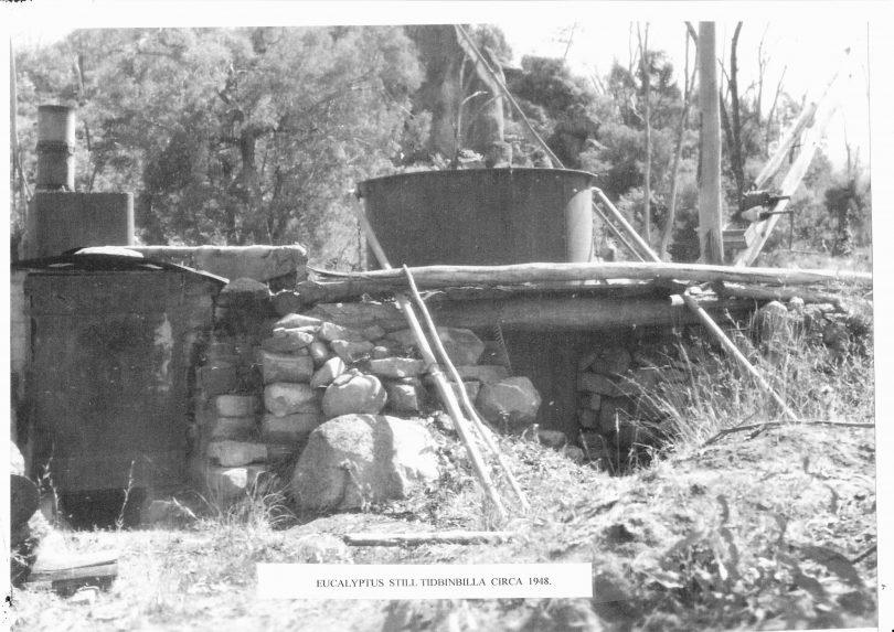 A eucalyptus still at Tidbinbilla from about 1948