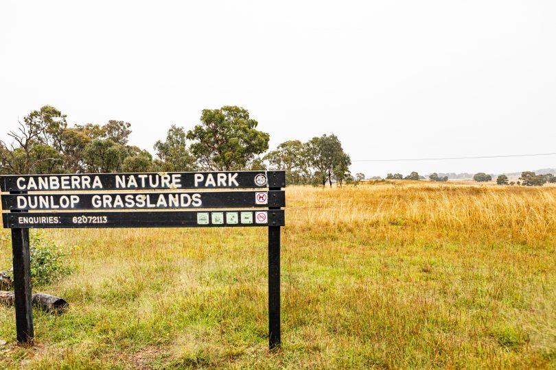 Dunlop Grasslands Nature Reserve