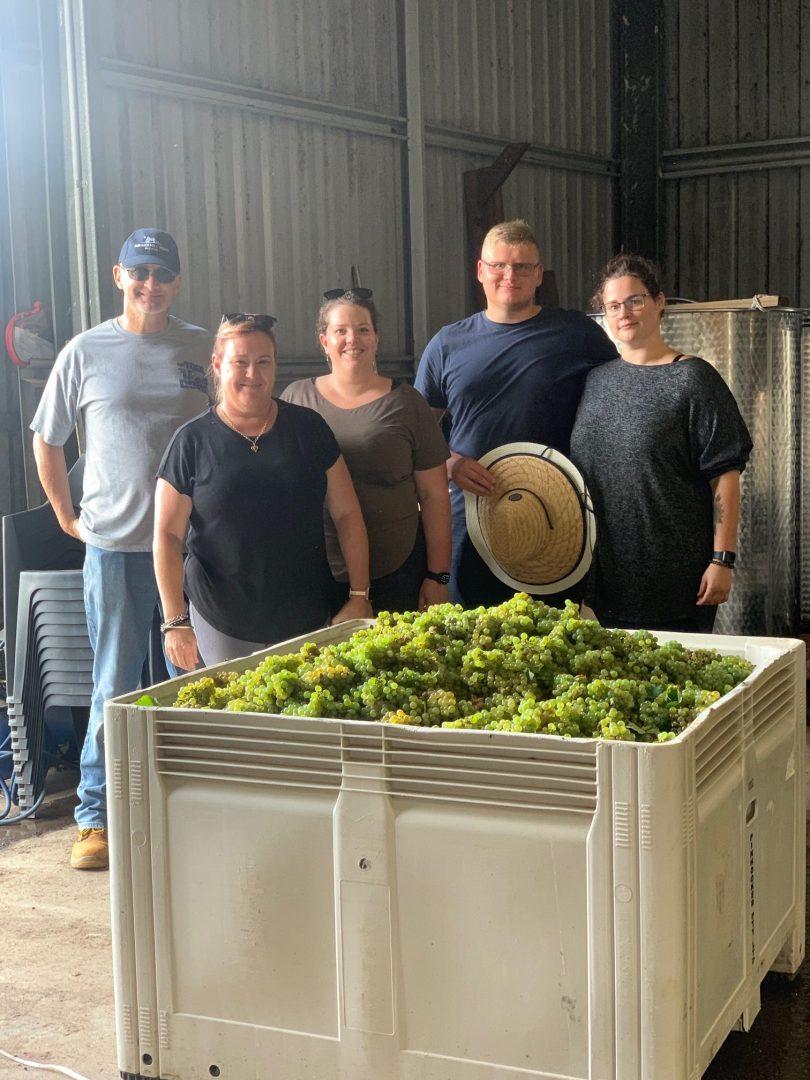 Lake George Winery harvest event
