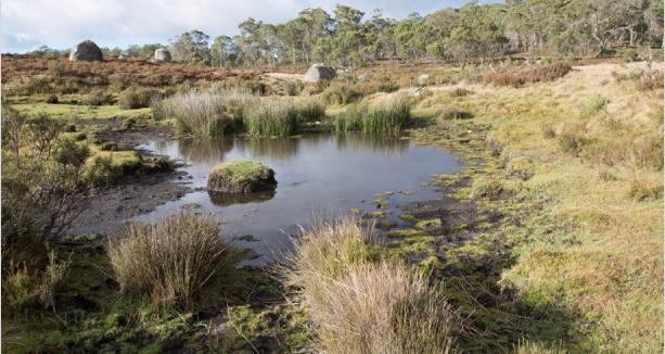 Ginini Flats Wetlands Complex in Namadgi National Park