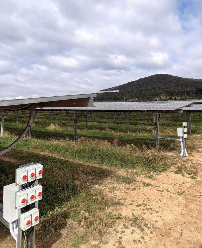 The SolarShare solar farm at Mt Majura near Canberra