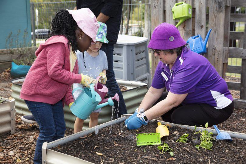 Children watering vegetable garden at WCS Evatt Preschool