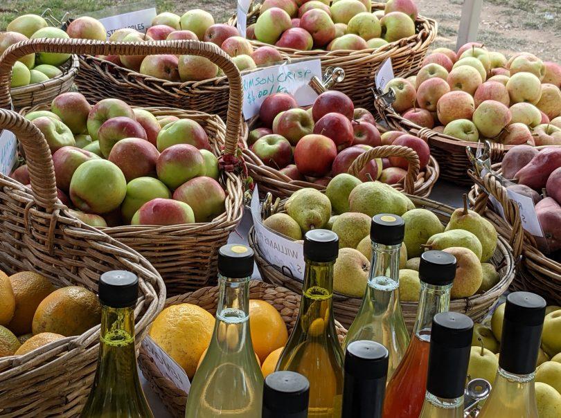 Apples from Mamma Rita's Farm