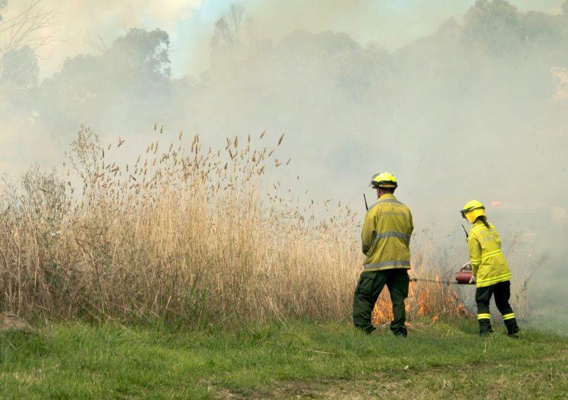 Firefighters undertaking a prescribed hazard reduction burn in Canberra