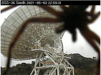 Huntsman spider over deep space antenna