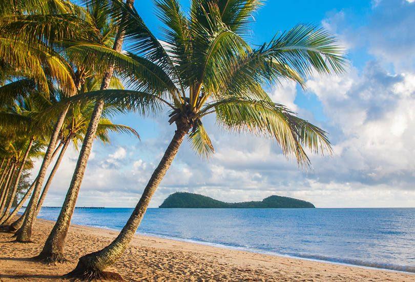 A Taste of the Tropics promo