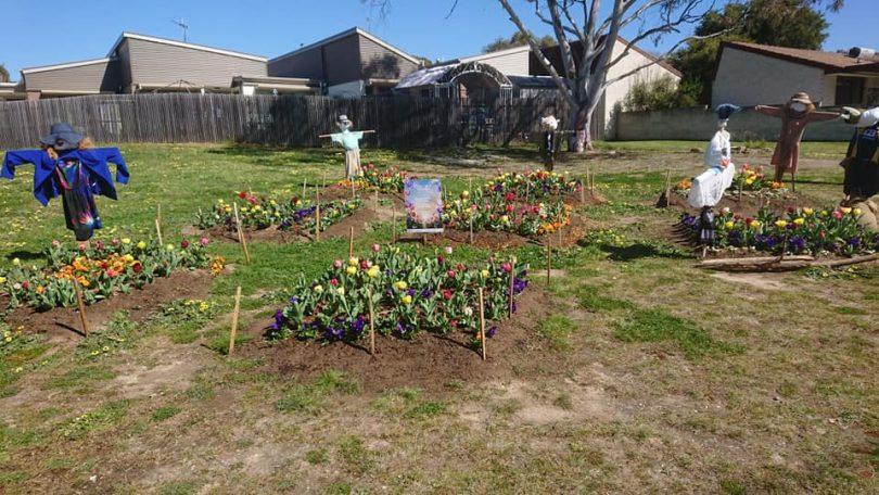 Scarecrows in garden