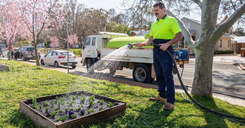 Icon Water employee watering flowers