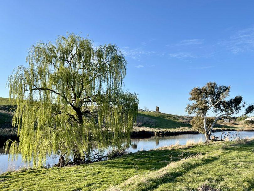 Yass River